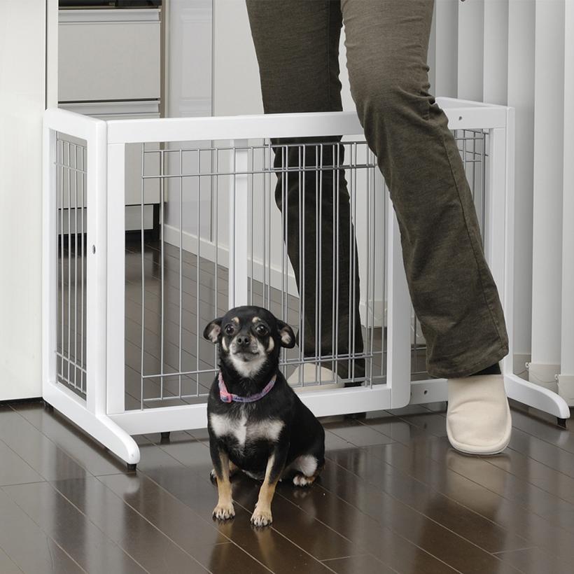Merveilleux Pet Products