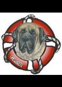 Great Lakes Mastiff Rescue