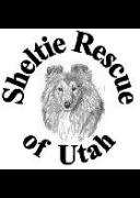 Sheltie Rescue of Utah