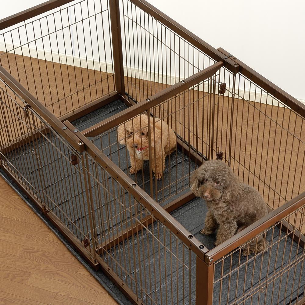 Dog Crate With Potty Divider Goldenacresdogs Com