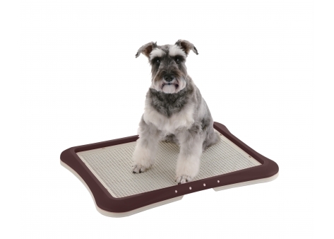 How to potty-train your pet using PAW TRAX Mesh Training Tray