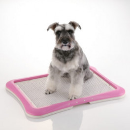 PAW TRAX® Mesh Training Tray