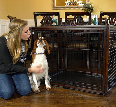 Richell Usa Pet Gates Dog Crates Pet Products And More