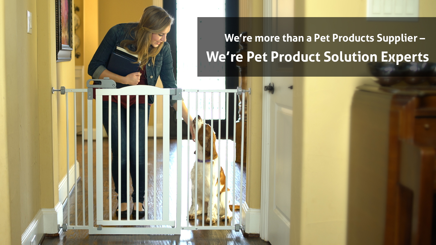 Pet supplier, pet gate, cat product