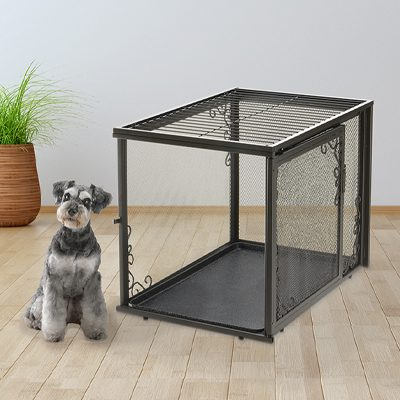 Why Crate Training is Important