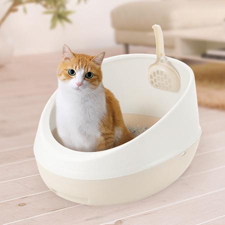 chat dans une litière ouverte